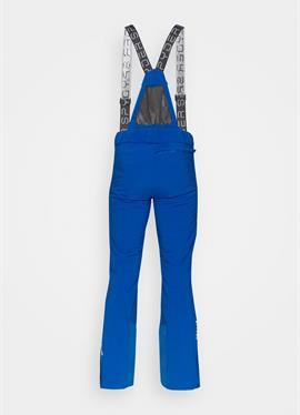 PROPULSION GTX - лыжные брюки